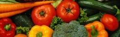 Organische markt Kolonaki