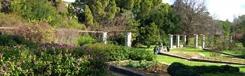 Botanische tuin in Chaidari
